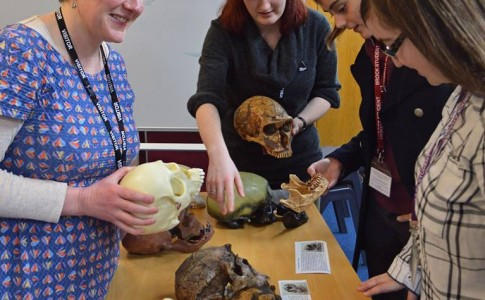 Students studying ancient bones at Brock