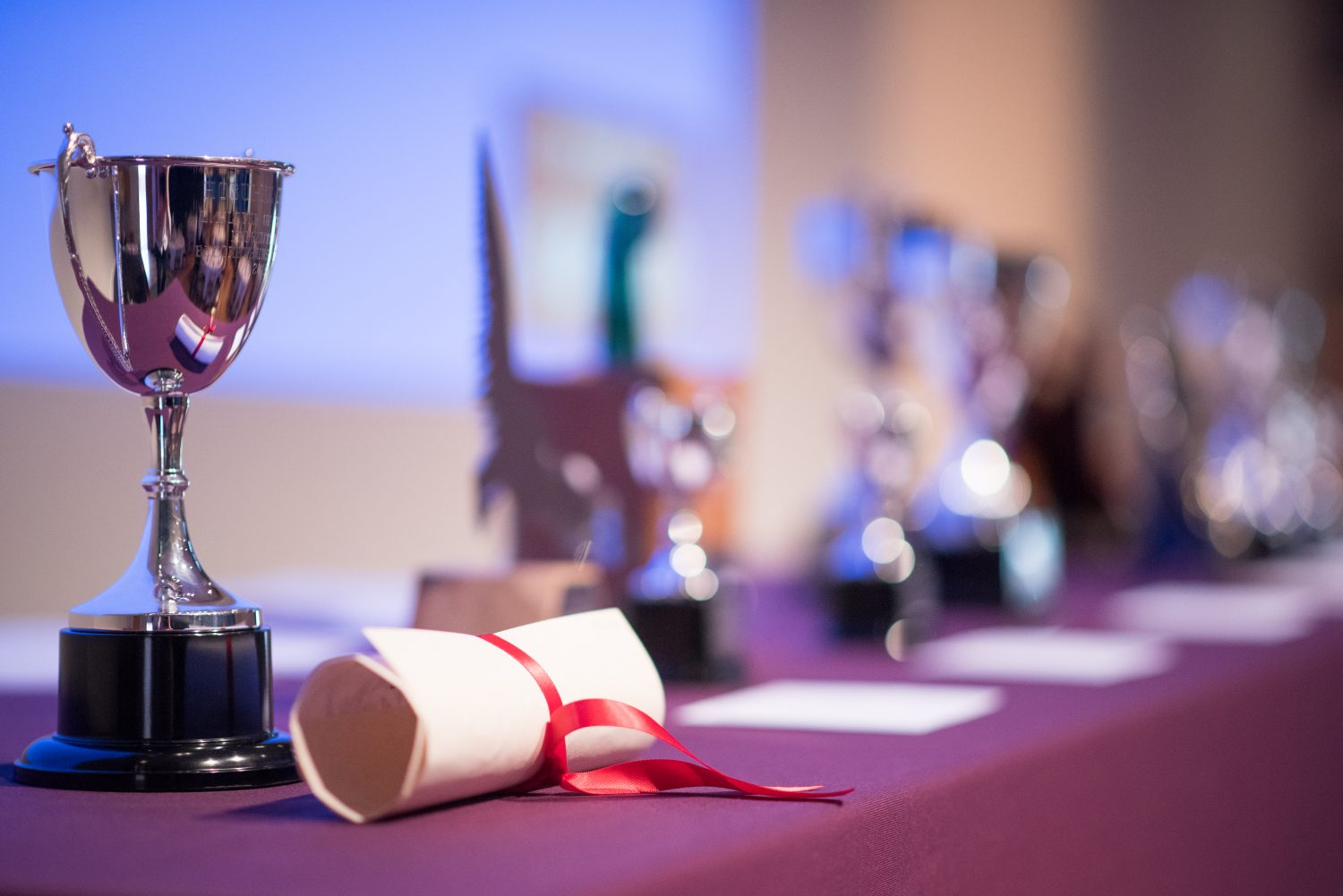 Close up of trophies and scrolls on table
