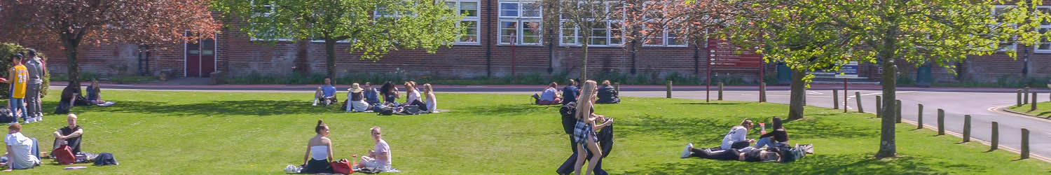 Students on front lawn during the summer