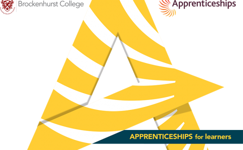 Apprenticeships - Available now.
